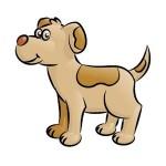 Consigli per chiamare il tuo cane
