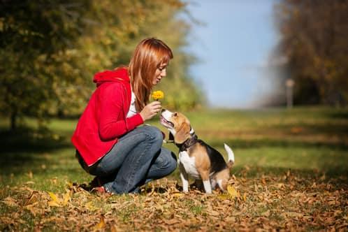 Donna tedesca con la sua cagna beagle