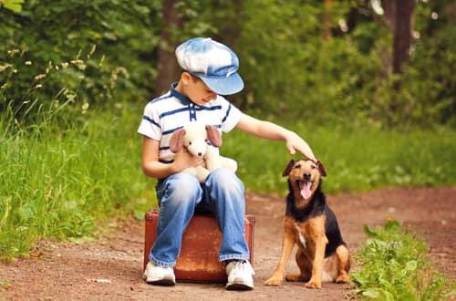 Ragazzo tedesco con il suo cane