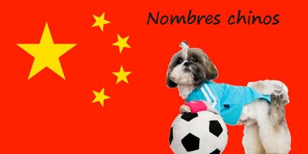 nomi cinesi top 10