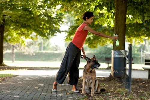 donna con il suo cane pastore tedesco