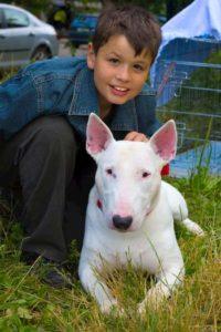 ragazzo con il suo cane bianco bull terrier